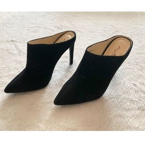 NWOT Anne michelle ankle boots
